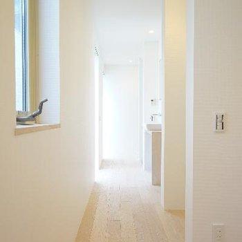 廊下には窓がたくさん!明るさ◎