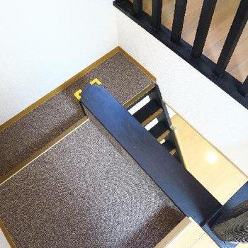 階段は絨毯。斬新。