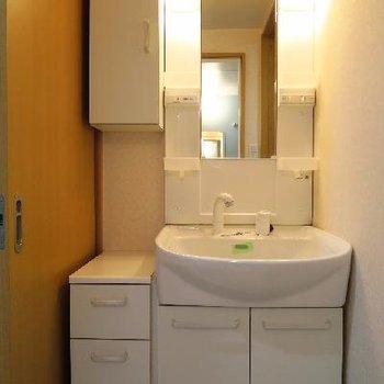 洗面台も収納がたっぷり。
