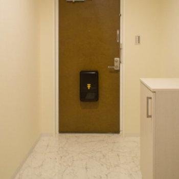 ひろーい玄関はちょっとした荷物も置けます。※写真は203号室