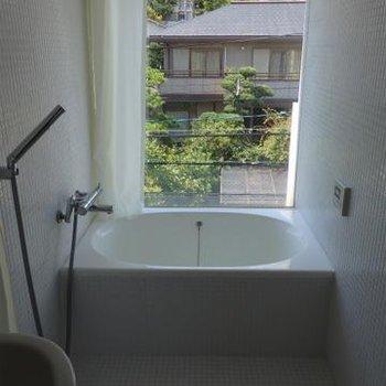 大きな窓のお風呂。ステキ。。。 ※写真は201号室