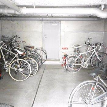 暗めの駐輪場