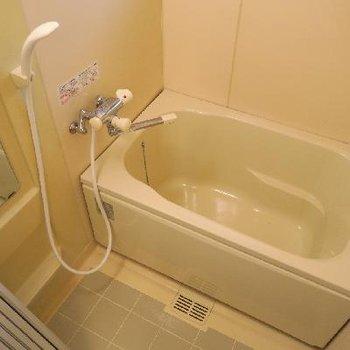 お風呂、綺麗です!