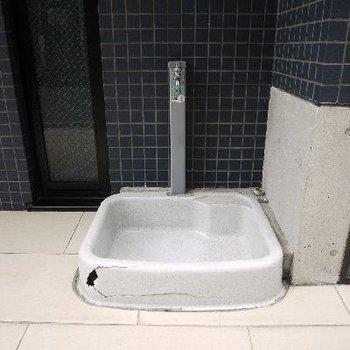 ペット専用の足洗い場もありました!