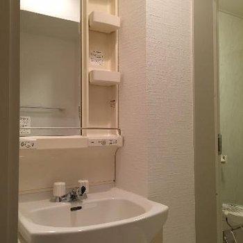 洗面スペースはちょっとコンパクト