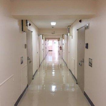 共有部の廊下はシンプル