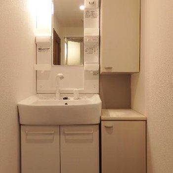 独立洗面台にはシャンプードレッサー付き