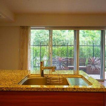キッチンからの眺めも最高ですね~!