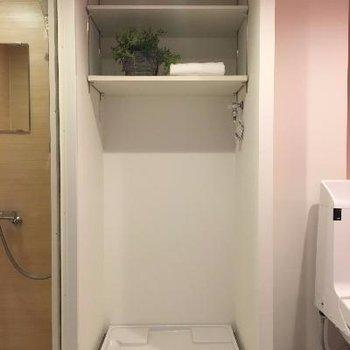 横は洗濯機置場です