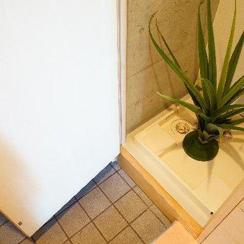 玄関横に洗濯機です!