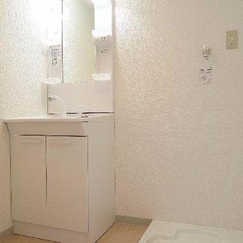 洗面台と洗濯機のスペースですね。