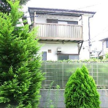 眺望です。敷地内のグリーンが素敵!目隠しの柵が役割を発揮しています!