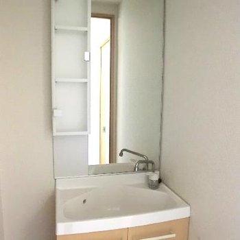洗面台も完備。普通です。