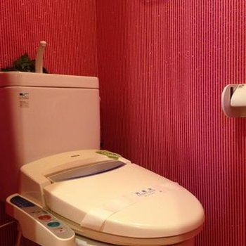 ただのピンクじゃありません。壁面にはラメが入っています。