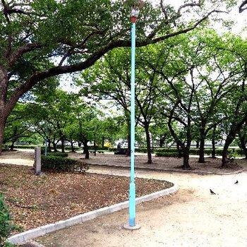 目の前が大川、緑がたっぷりの公園!