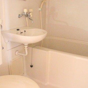 お風呂、洗面台、トイレは同一空間に