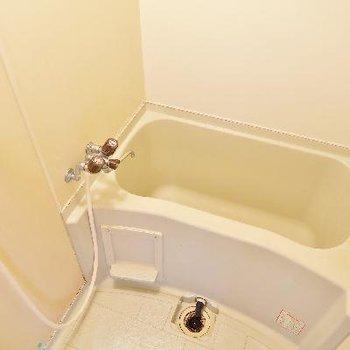 お風呂はちょいとコンパクト。