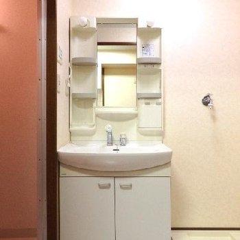 洗面台も大きめです!
