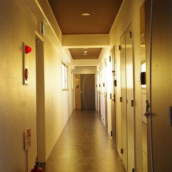 しゅっとした片廊下型の共用部