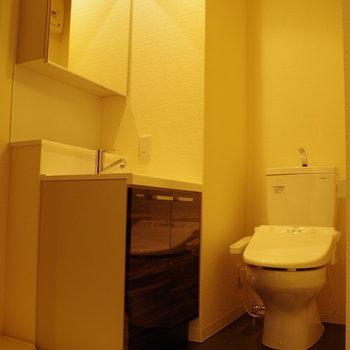 洗面とトイレは仲良く同じお部屋に