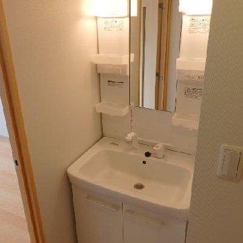 廊下に洗面台※写真は別部屋