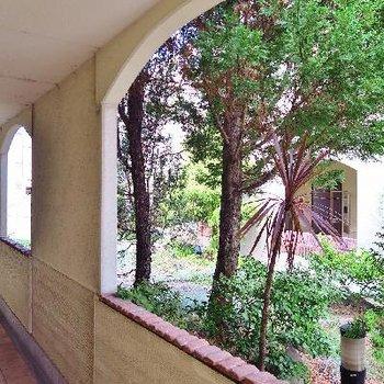 中庭の雰囲気が素敵!