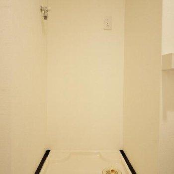 ついでに洗濯パンも一緒の空間。