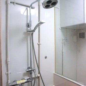 蛇口もついてる!シャワーが特徴的♪