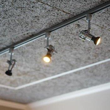 特徴的な天井とライティングレールで。