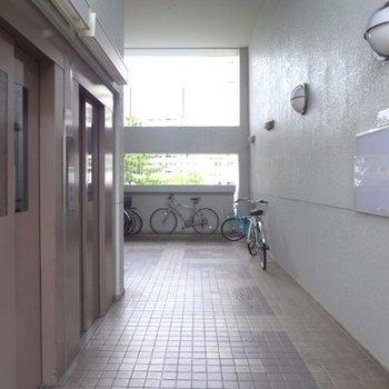 エレベーターホールと、この棟の駐輪スペース