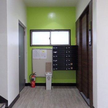 色が面白い。ビビットなグリーン。