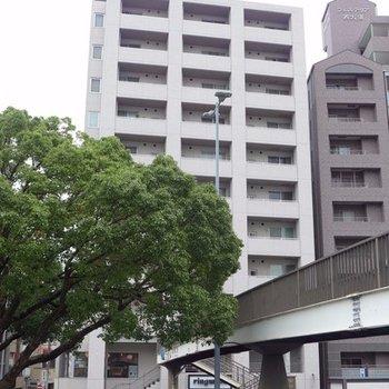 11階建のしっかりしたマンション