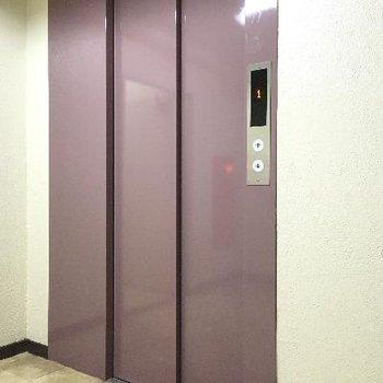 エレベーター。6階のお部屋なので必須ですね!