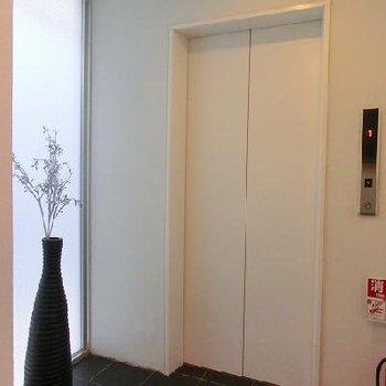 エレベーターホールも明るく、管理も行き届いています