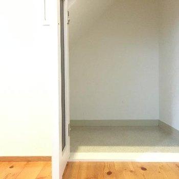 階段下には収納が!かなり奥行きがあります。