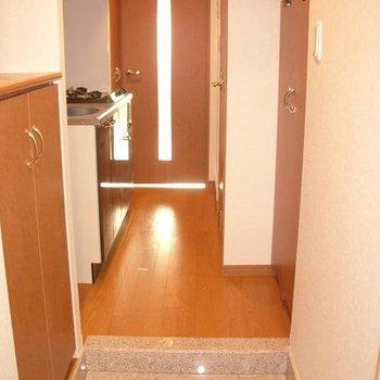 玄関からの眺め。左の扉の中が洗濯機置き場です※写真は別部屋です
