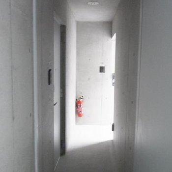 共用スペースややせまめ。※写真は別室です
