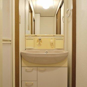収納箇所の多い洗面。