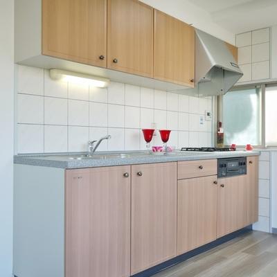 広めのキッチンスペース。