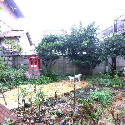 家庭菜園ができるんです!!