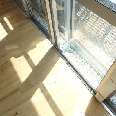 二重サッシで遮音もバッチリ!この通りの日当たり。窓際はひなたぼっこスペースに最適!