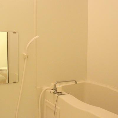 バスルームは一般的なタイプになります
