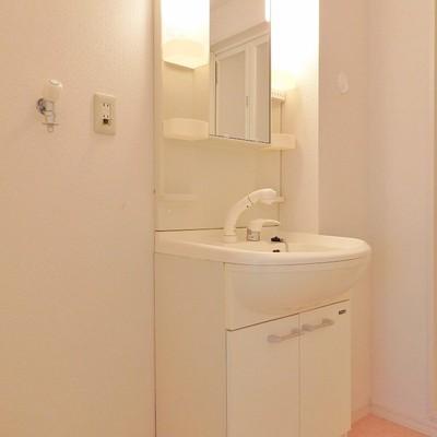独立洗面台はシャワー付き。洗濯機も室内にどうぞ。