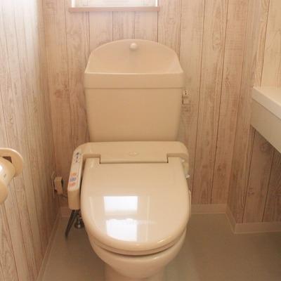 山小屋風?のトイレ