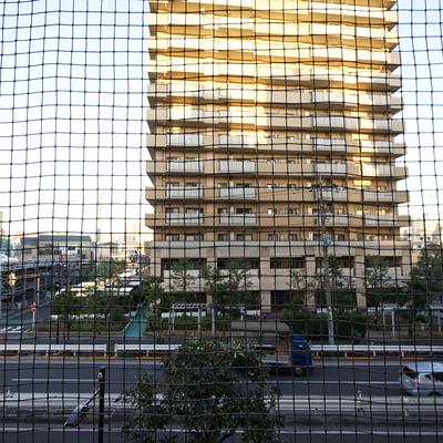 眺望はこちら。鳥よけネットが設置されてます。