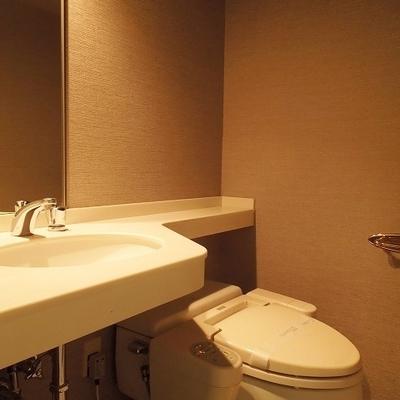 何だかホテルのようなトイレです*写真は別のお部屋です
