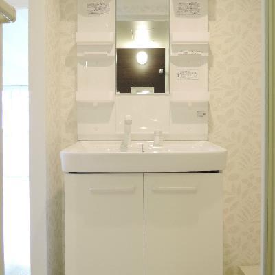 独立洗面台。壁がアクセント。