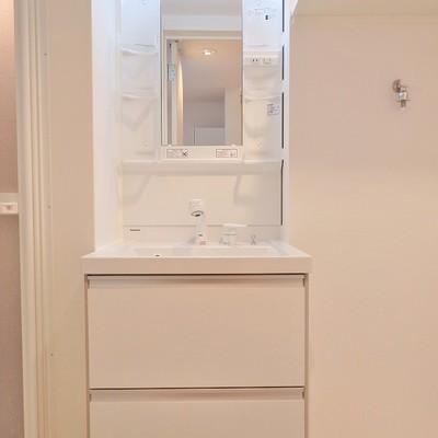 洗面台はシャンプードレッサーです。