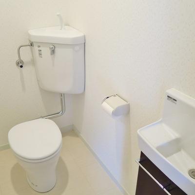 ゆったりめのトイレ。