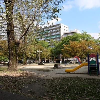 マンション前の公園。